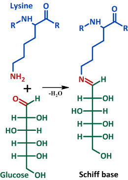 Glycation (glucose) reactants