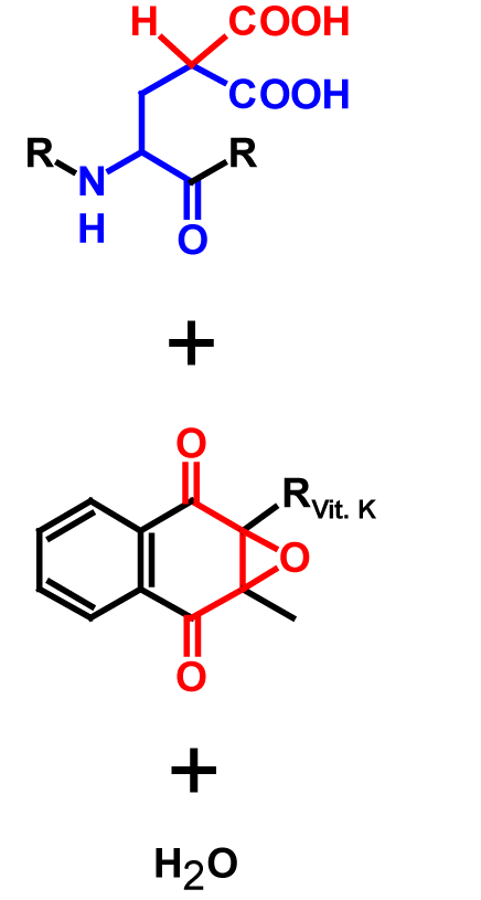 Carboxylation products
