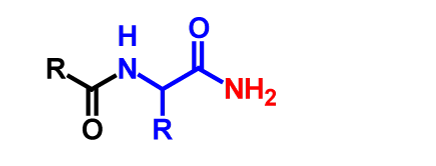 Amidation (in vitro) products