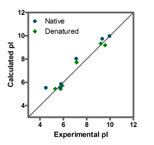 Figure 2: Correlation of experimental and calculated isoelectric point (pI) of native (blue) and denaturated (green) proteins.